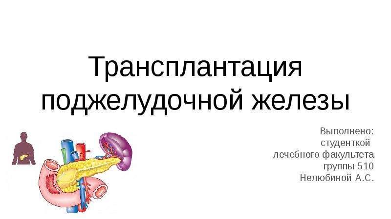 Презентация Трансплантация поджелудочной железы