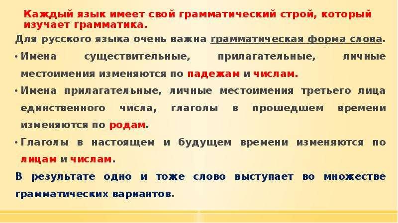 Каждый язык имеет свой грамматический строй, который изучает грамматика. Для русского языка очень ва