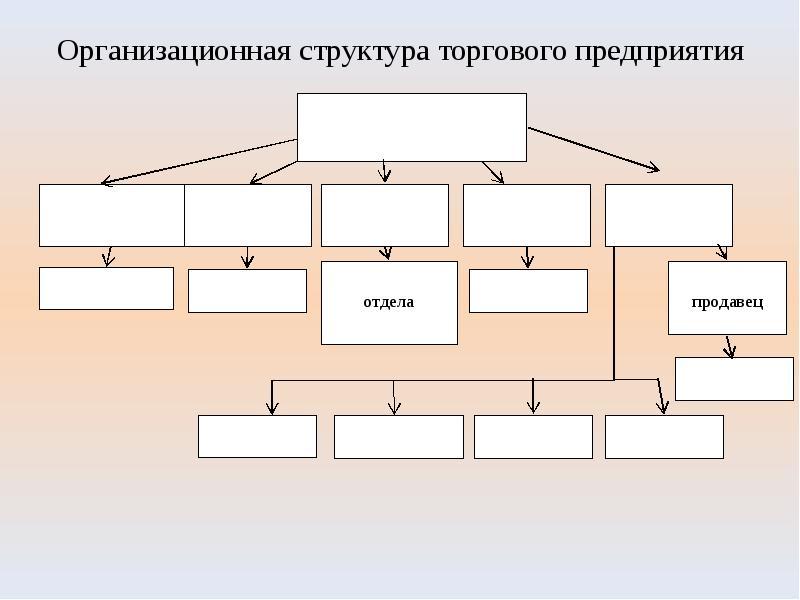 Организационная структура торгового предприятия