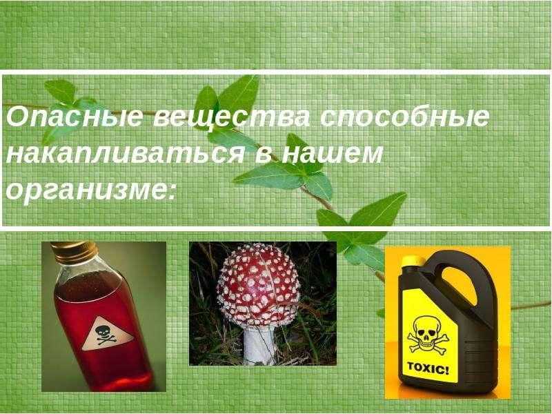 Опасные вещества способные накапливаться в нашем организме: