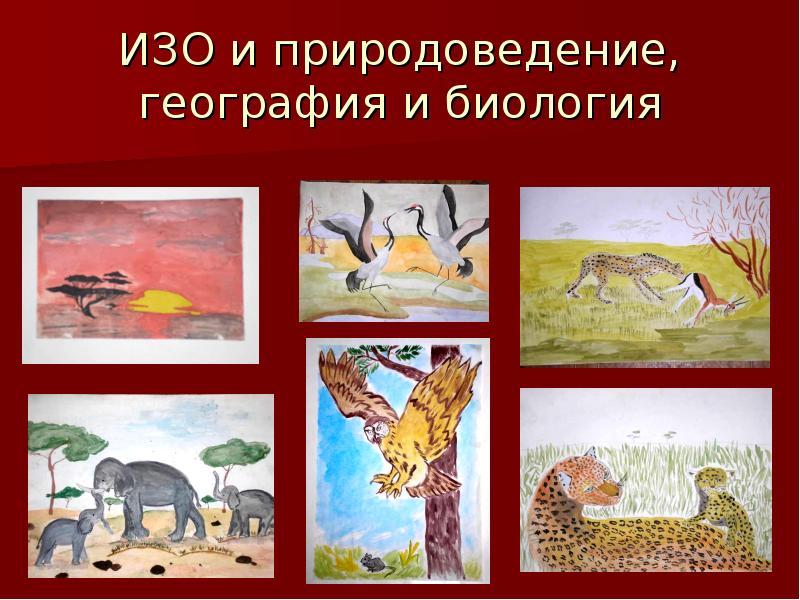 ИЗО и природоведение, география и биология