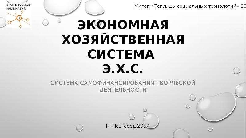 Презентация Экономная хозяйственная система